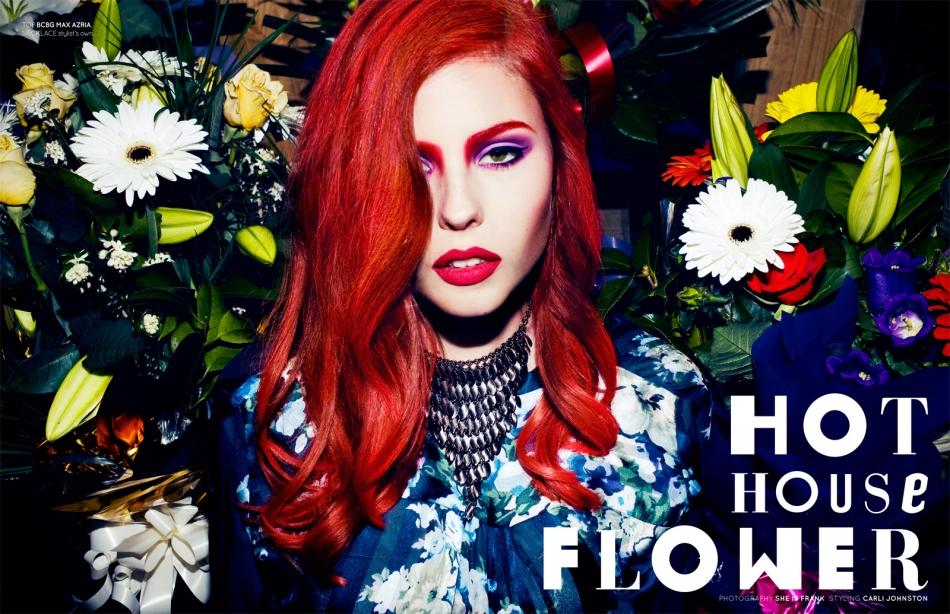 hothouseflower-01