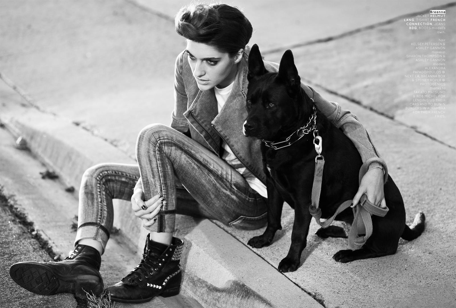 hounddogs-11